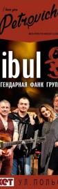 Cuibul 24.02 АйЛавЮПетрович