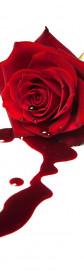 Ядовитая роза