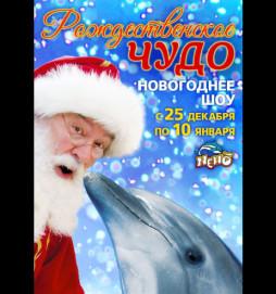 Рождественское чудо. Новогоднее шоу